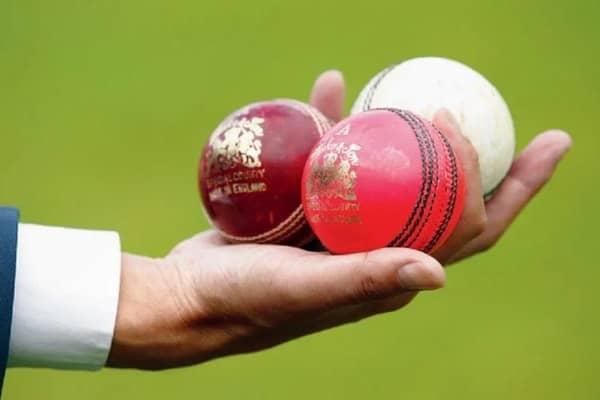 Kookaburra cricket ball price